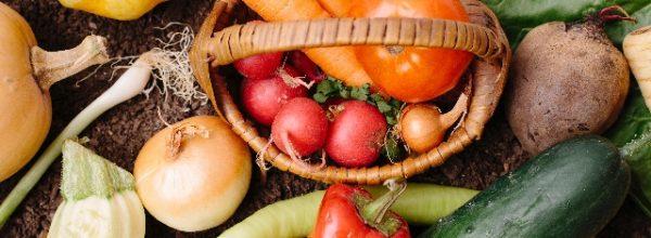 野菜不足解消に適しているのは青汁?グリーンスムージー?サプリメント?外食が多い人必見!